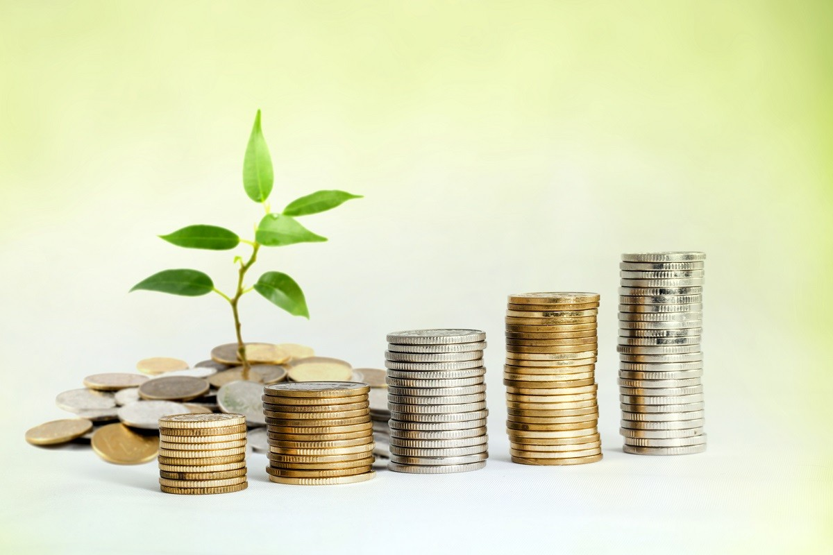 Growing-Investment-Stock-Photo