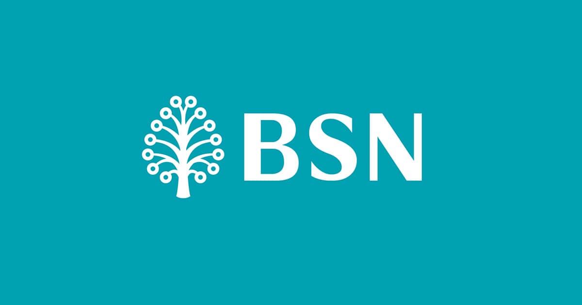 Skim Perumahan Belia BSN: For Young Adults 2